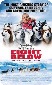 Movies about dogs - Eight Below