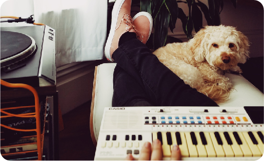 How to desensitize a dog to loud noises - Play music